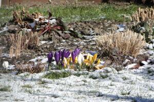 Zimowy początek wiosny: najpierw śnieg, potem słońce