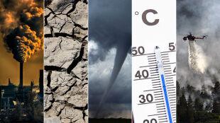Rekordowy skwar, susze, nawałnice, smog. Kryzys klimatyczny jest faktem