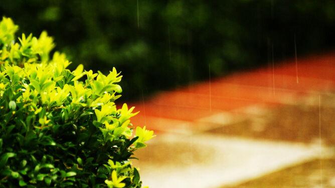 Prognoza pogody na dziś: popada i powieje. Na termometrach maksymalnie 16 st. C