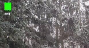 Śnieg w Łodzi (czwartek)